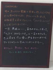 img_4933_r