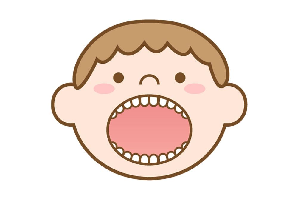 永久歯に生え変わり始めた時